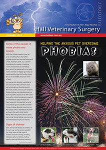 HVS Newsletter SUMMER 2015 tnail