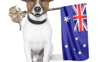 Australia Day Holiday 2015