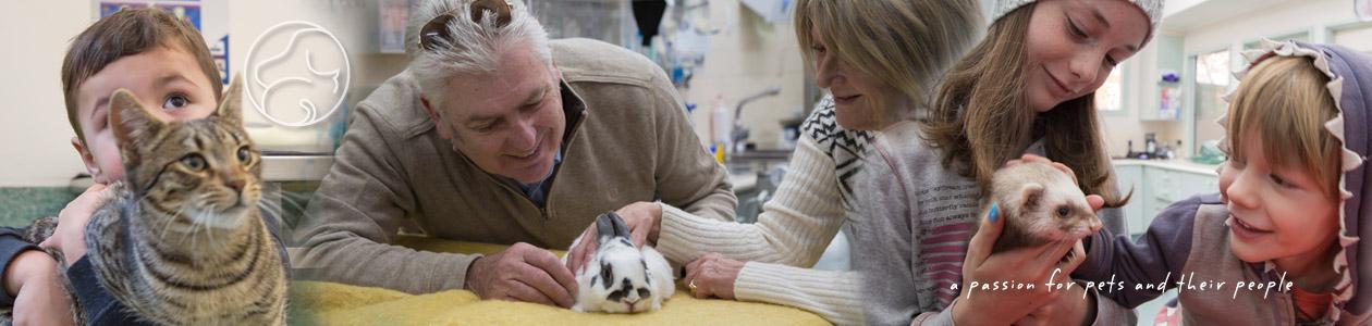 Hall Veterinary Surgery